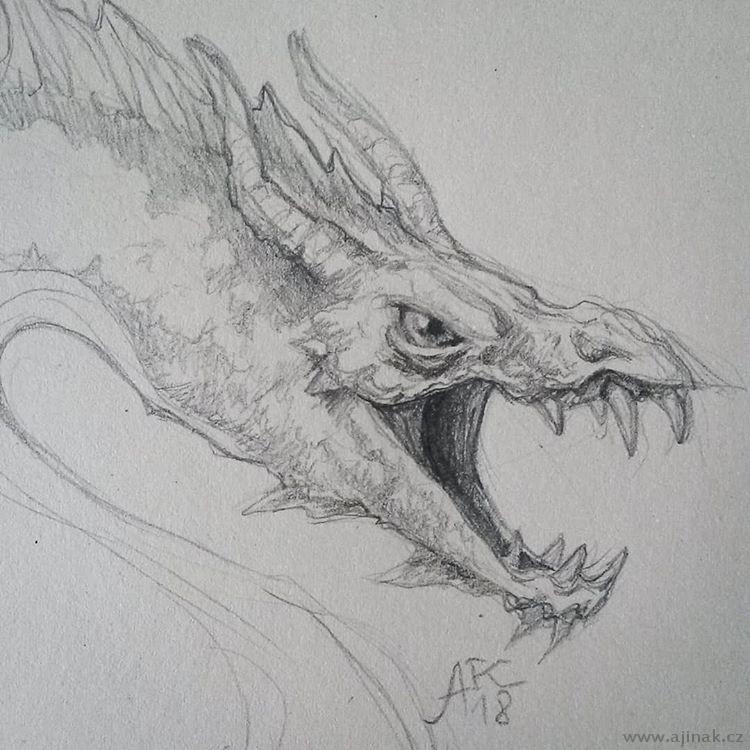 Dragon sketching #1